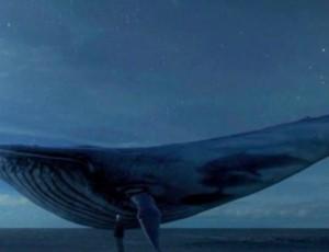 Niebieski wieloryb: gra z Rosji, która... ZABIJA!